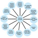 Cuadros sinópticos sobre bulimia