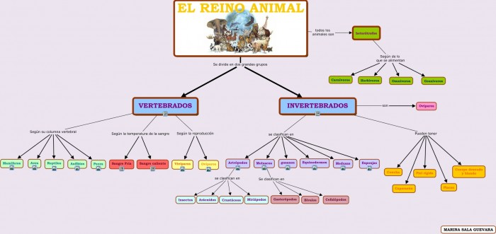 El reino animal.cmap