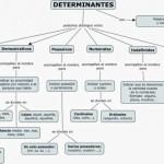 Cuadros sinópticos sobre determinantes y su clasificacón ( lingüistica)