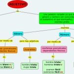 Cuadros sinópticos sobre adjetivos y sus clases
