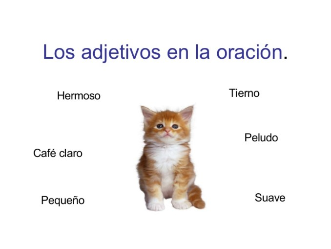 adjetivos-en-la-oracin-1214923787560203-8-thumbnail-4