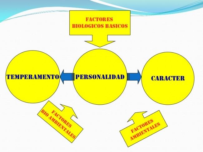 15 Diferencias En Las Personalidades De Personas Exitosas: Cuadros Sinópticos Sobre La Personalidad
