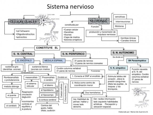mconceptual-snervioso-1-728