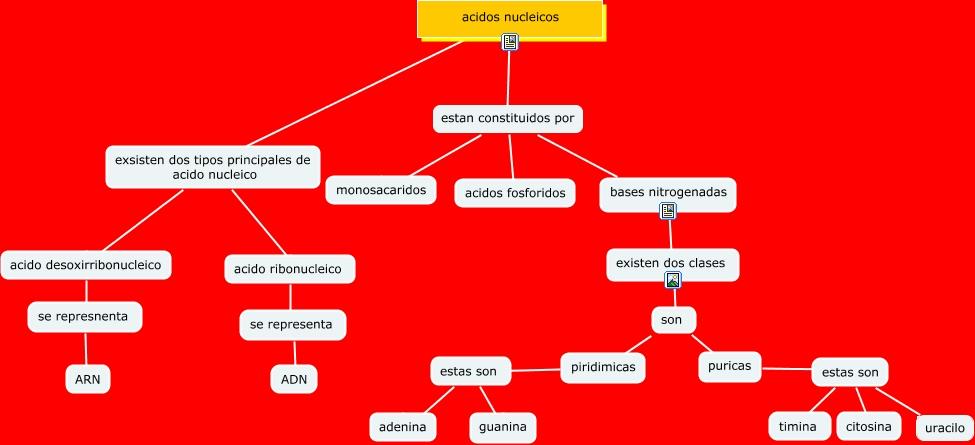 ACIDOS NUCLEICOS.cmap
