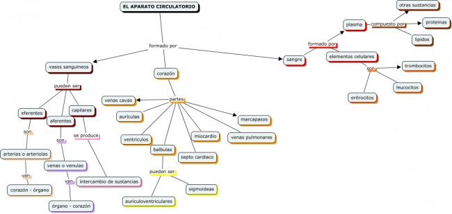 Cmap cardiovascular de Silvia Labarta.cmap