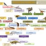 Cuadros sinópticos sobre reptiles y clasificación con cuadros comparativos