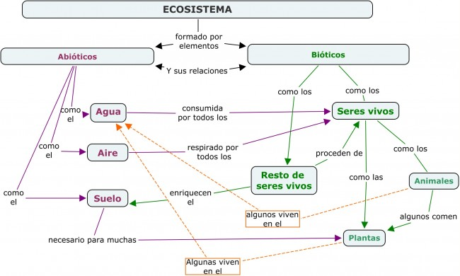 Cuadros sinópticos sobre Ecosistema y mapas conceptuales