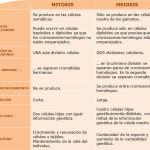 Cuadros comparativos entre Mitosis y Meiosis