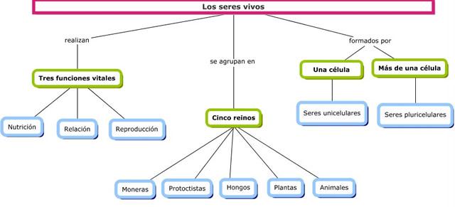 CIENCIAS15_RDE_MAPA_CONCEPTUAL