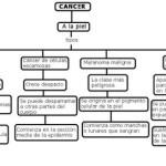 Cuadros sinópticos sobre cáncer de piel