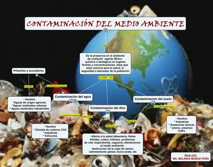 Contaminación mapa conceptual.cmap