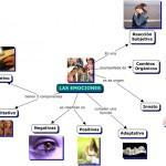 Mapas mentales y cuadros sinópticos sobre emociones positivas y negativas