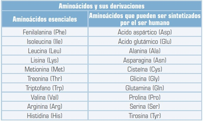 aminoacidos[5]