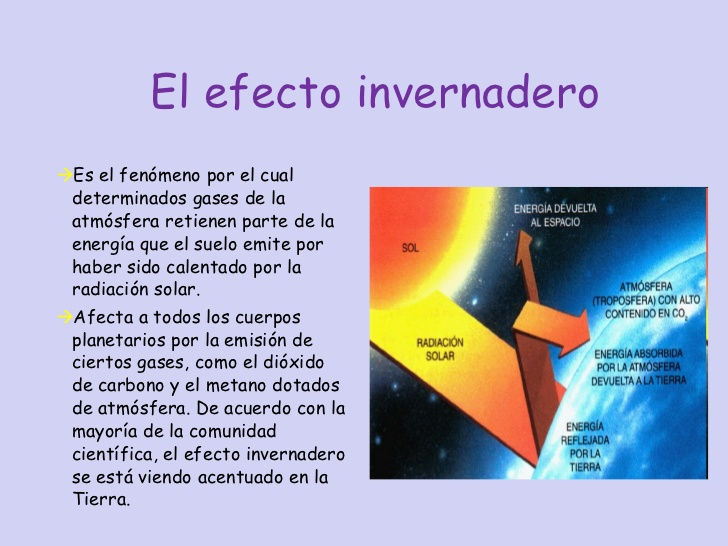 invernadero-3-728