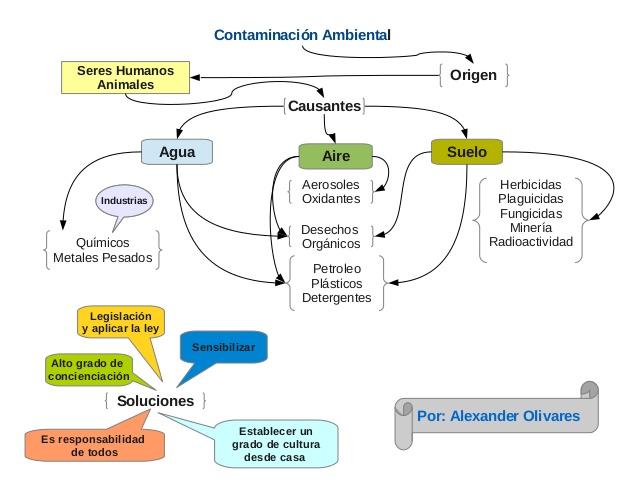 mapa-conceptual-contaminacin-ambiental-1-638