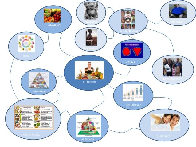 mapa-mental-nutricion-margarita-cornelis-1-638