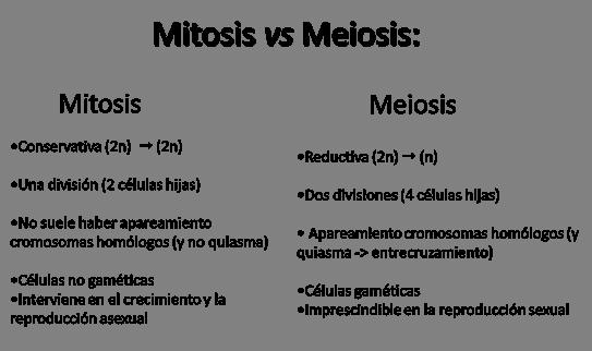 meioclip_image0321