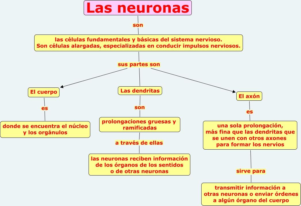 neuronas.cmap