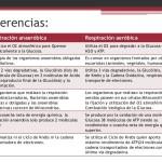 Cuadros comparativos entre respiración aeróbica y anaeróbica