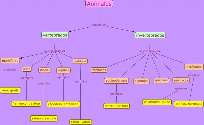 animalesMapa-Conceptual-Animales