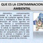 Cuadros comparativos y sinópticos sobre la contaminación ambiental: Tipos