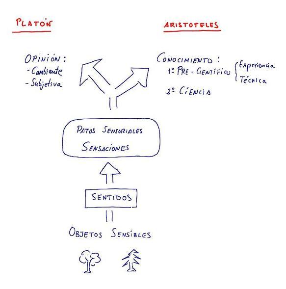 Sensaciones_en_el_conocimiento_P_vs_A