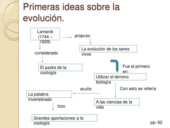 biologia-22-la-teoria-de-darwin-y-lamarck-4-728