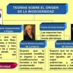 Cuadros comparativos y sinópticos de las Teorías evolutivas