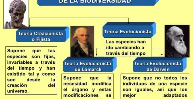 cuadroteoras-sobre-el-origen-de-la-biodiversidad-3-728