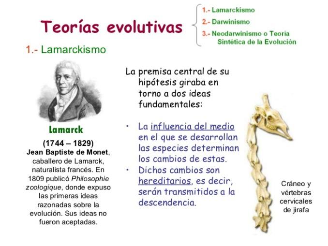 evolucin-3-teoras-evolutivas-1-728