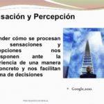 Cuadros comparativos entre sensación y percepción: Diferencias