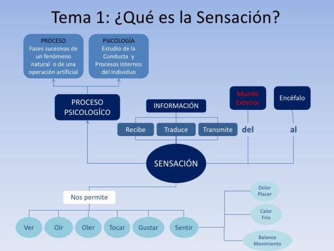 unidad-1-sensacin-y-percepcin-1-728