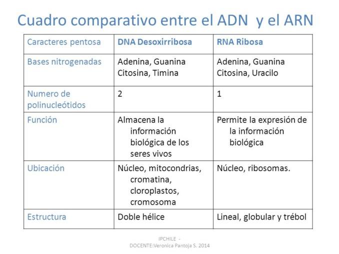 slide_24