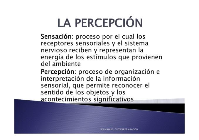 la-percepcin-1-728