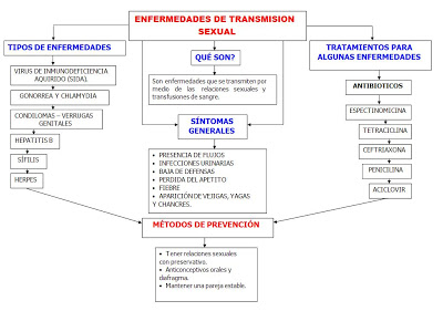 mapa-conceptual-enfermedades-de-transmision-sexual