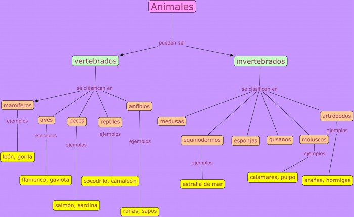Mapa-Conceptual-Animales