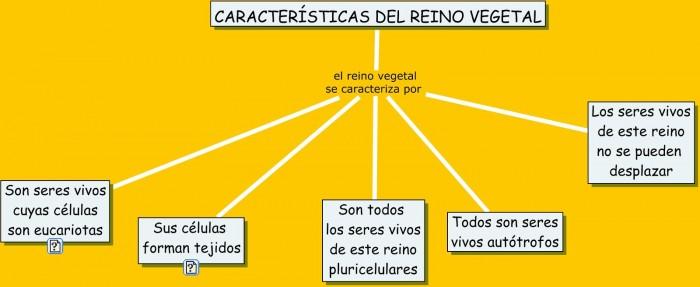 CARACTERISTICAS GENERALES DE LAS PLANTAS