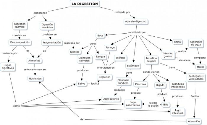 Cmap digestivo Manuelgvs.cmap