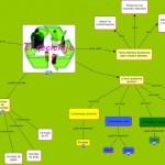 Cuadros sinópticos sobre reciclaje