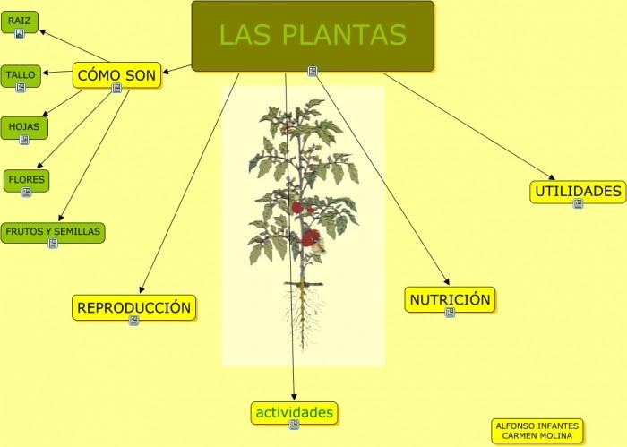 LAS_PLANTAS