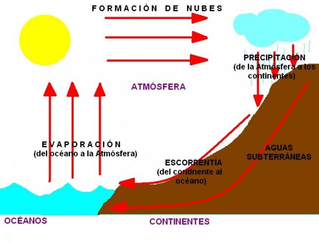 Cuadros sinópticos sobre el ciclo del agua o ciclo hidrológico ...