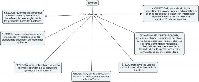Ecologia cuadro