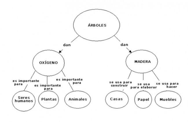 MAPA CONCEPTUAL ARBOLES - copia