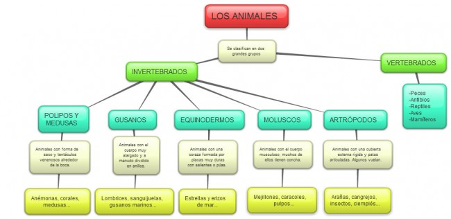 Mapa conceptual(II) INVERTEBRADOS