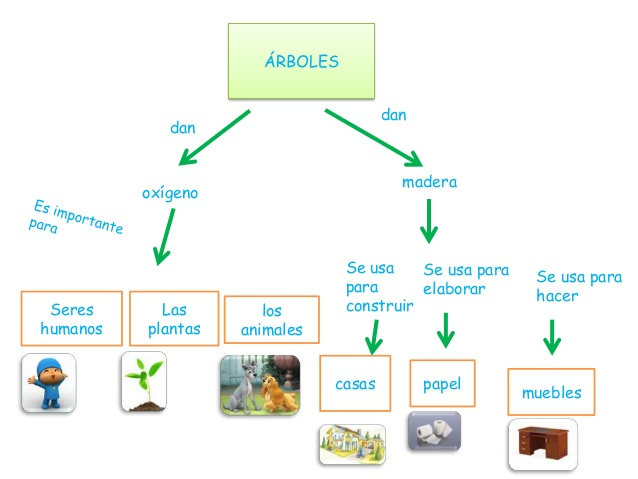 arbolesvarios-mapas-conceptuales-2-638