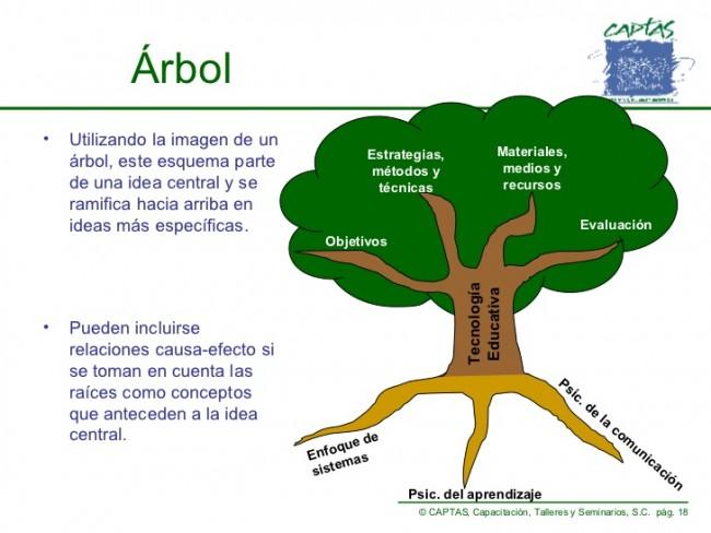 Cuadros sin pticos sobre los rboles y sus funciones for Tipos de arboles y su significado