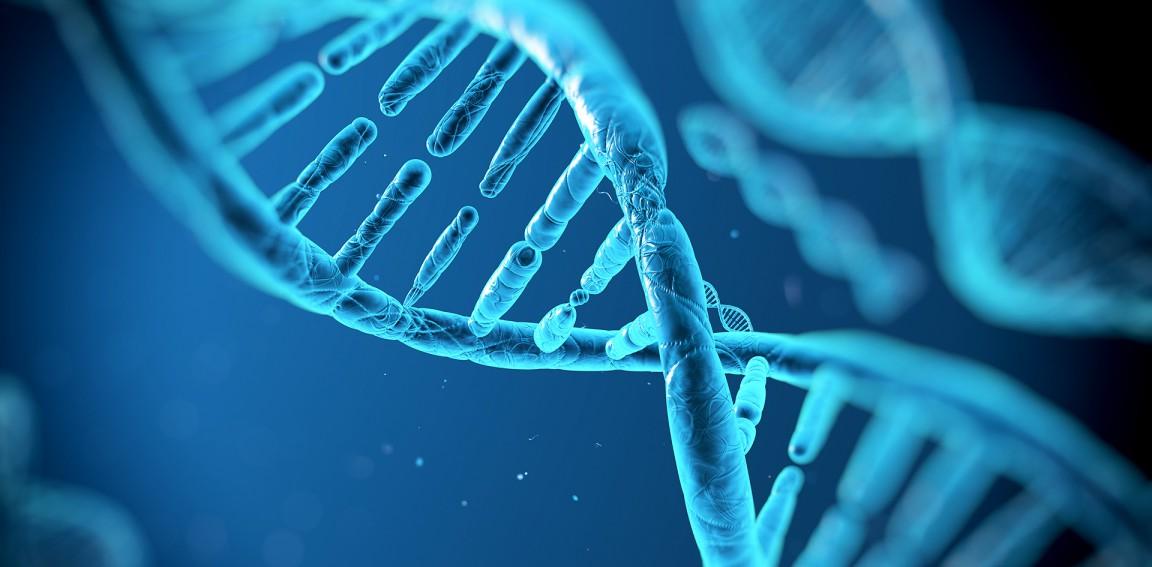 Acidos-nucleicos-adn-biologia