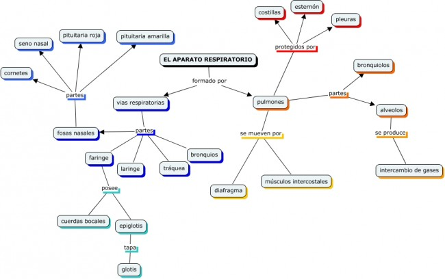 Cmap respiratorio de Silvia Labarta.cmap