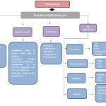 Cuadros sinópticos sobre las hormonas