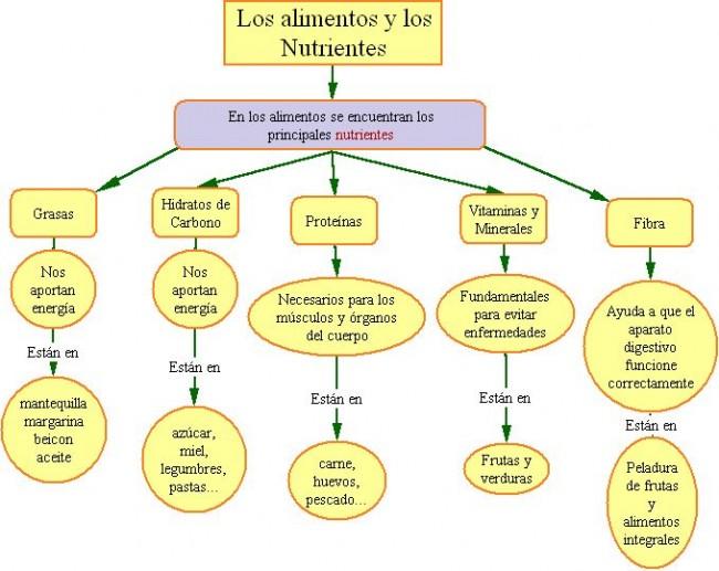 Los_alimentos_y_los_Nutrientes